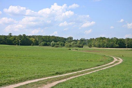Away, Bend, Swirl, Nature, Landscape, Field, Meadow