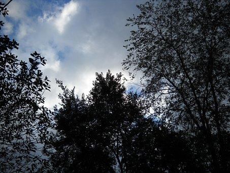 Storm, Clouds, Nature, Dark, Rain, Weather, Dramatic