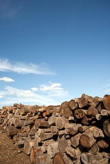 Firewood, Wood, Firewood Stack, Holzstapel