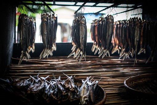 Food, Fish, Natural, Tradition, Life, Taiwan, Dry