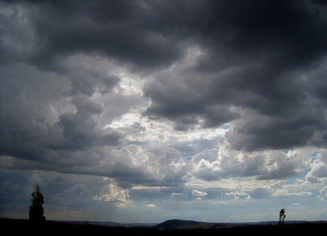 Clouds, Overcast, Heavy, Dense, Ominous, Lighting, Tree