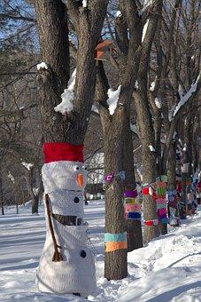 Park, Snow, Winter, Trees, Nature, Cold, City Park