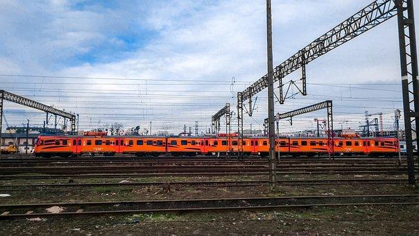 Tiger, Train, Locomotive, Wagons, Railway, Rails, Pkp