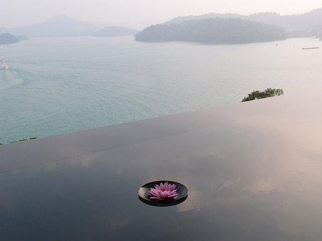 Sun Moon Lake, Reflection Pond, Flower, Yuchi Township