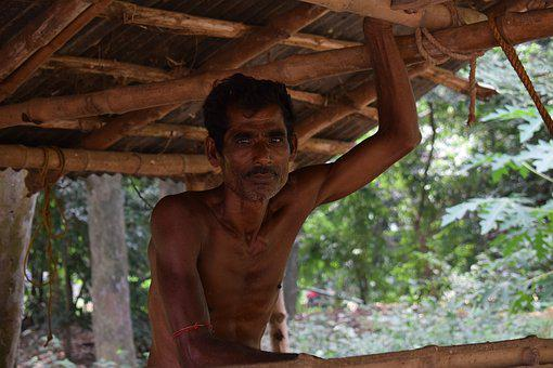 Indian, India, Poor, Farmer, West Bengal, Worker