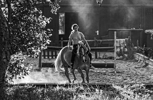 Horse Woman, Horse, Rider, Horse Riding, Equestrian
