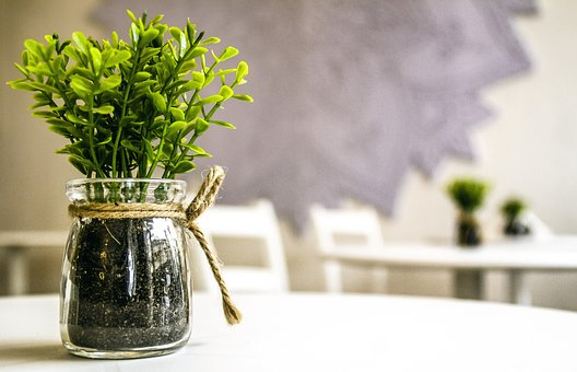 Flower Pot, Perspective, Nature, Landscape, Green