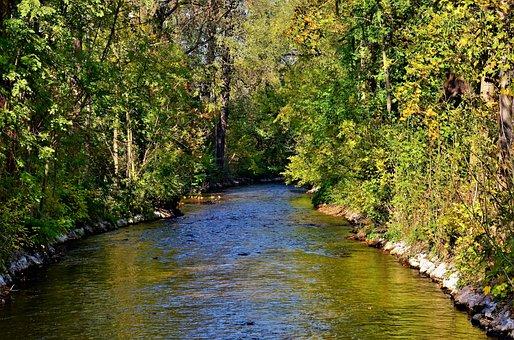 River, Bach, Water, Creek, Waters, Flowing, Trees