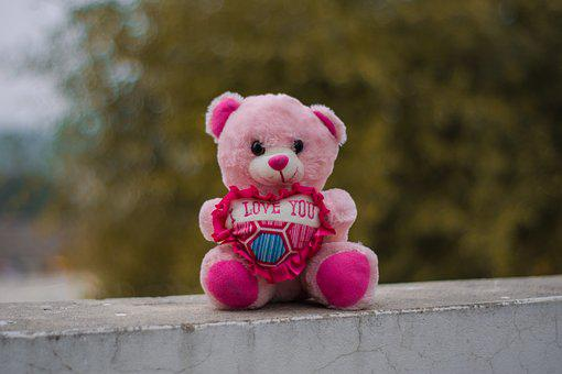 Teddy, Portrait, Toys, Lighting, Bear, Cute, Nature