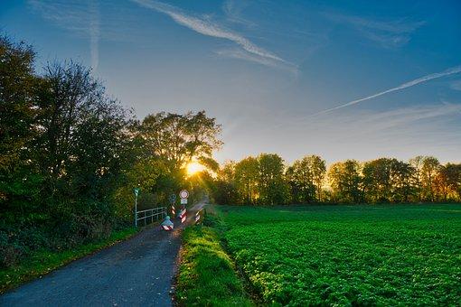 Away, Cycle Path, Walk, Autumn, Germany, Sunbeam, Mood