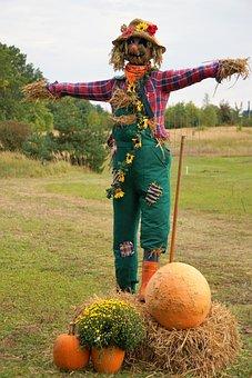 Pumpkin, Orange, Large, Autumn, Halloween, Decoration