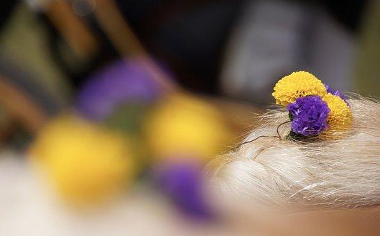 Color, Colors, Flowers, Braid, Hair, Nature, Colorful