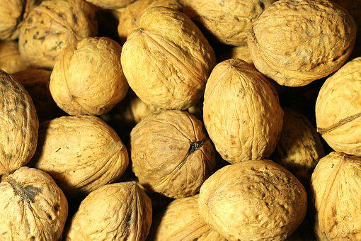 Walnut, Nut, Shell, Delicious, Healthy, Tasty, Brown