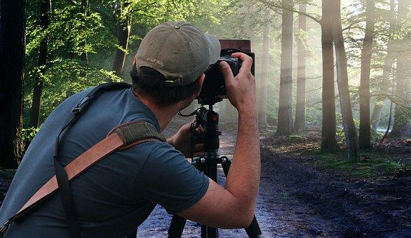 Photographer, Nature, Camera, Man, Image, Person