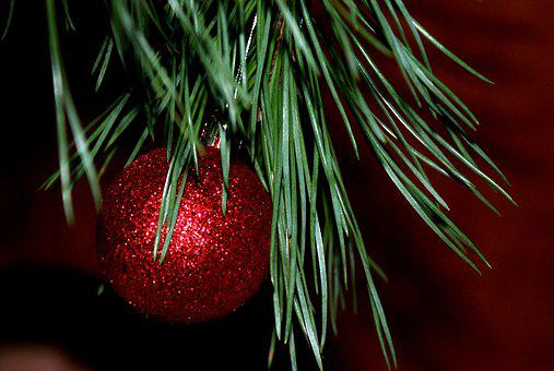 New Year's Eve, Christmas Tree, Christmas, Jewelry