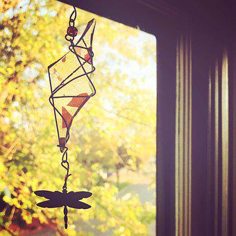 Window, Autumn, Fall, Dragonfly, Sunshine