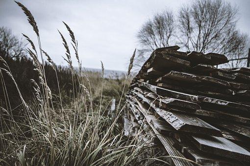 Grunge, Landscape, Old, Nature, Vintage, Design