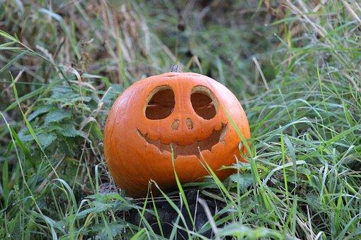 Pumpkin, Halloween, Orange, Decoration, Harvest