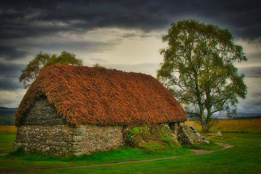Hut, Old, Tree, Lonely, Landscape, Nature, Rural