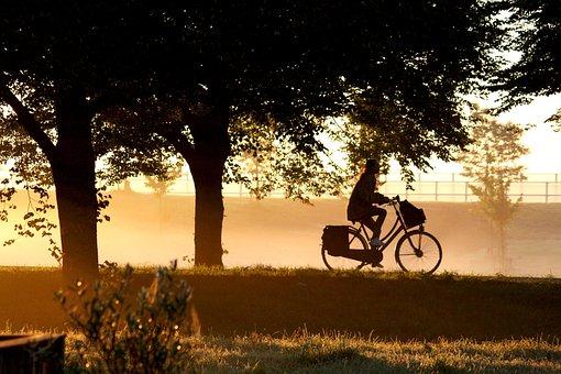 Morning, Dawn, Bike, Yellow, Orange, Work, Sunrise