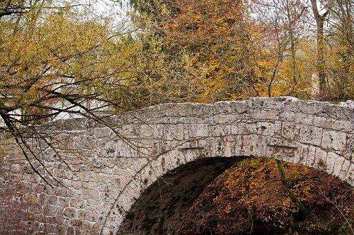 Bridge, Trees, Nature, Autumn, Forest, Away, Cross