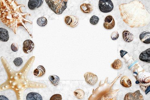 Sea, Sink, Background, Water, Ocean, Sand, Beach, Clam