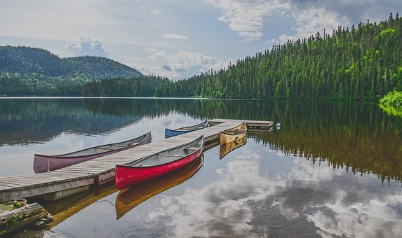 Canoe, Lake, Forest, Pontoon, Calm, Mirror, Travel