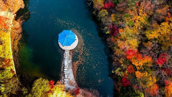 Drone, Autumn, Nature, Landscape, Forest, Lake, Air