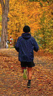 Jogger, Autumn, Park, Run, Man, Movement, Sporty