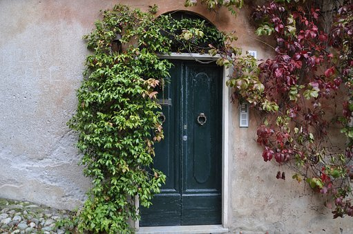 Door, Ivy, Creeper, Old, Plant, House, Entrance, Italy