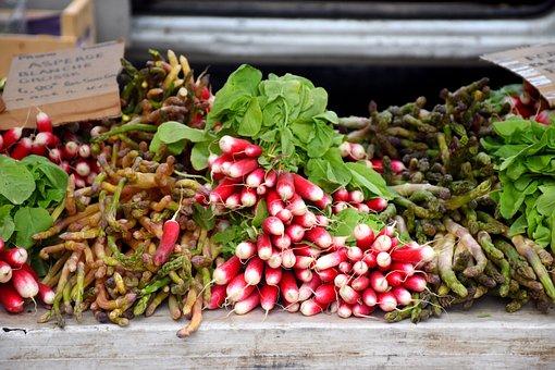 Vegetables, Radishes, Market Day, Provencal Market