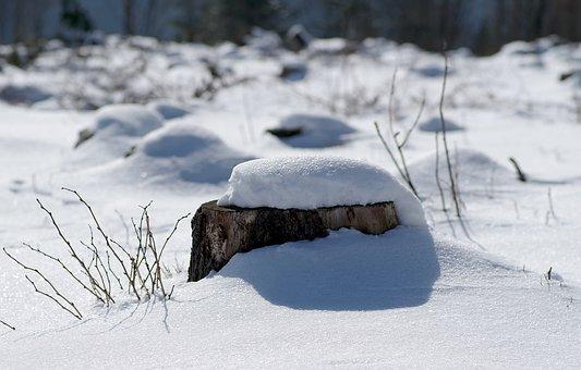 Winter, Snow, Biel, Frost, Snowdrifts, Blizzards