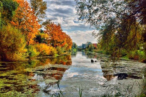Lake In Maximilliansau, Autumn, Water, Leaves, Trees