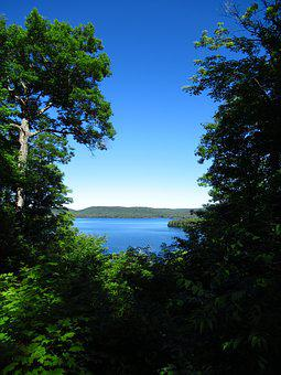 Forest, Lake, Water, Landscape, Outdoors, Woods, Summer