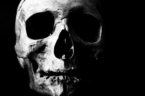 Human, Skull, Skeleton, Bone, Head, Death, Dead, Creepy