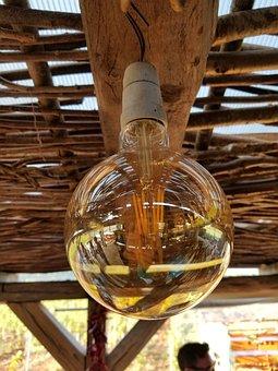 Light Bulb, Colors, Wood, Winery