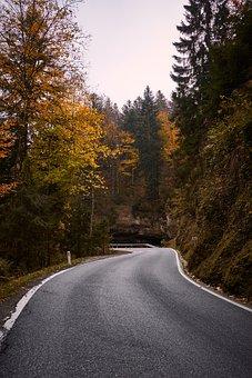 Autumn, Leaves, Road, Forest, Nature, Fall Foliage