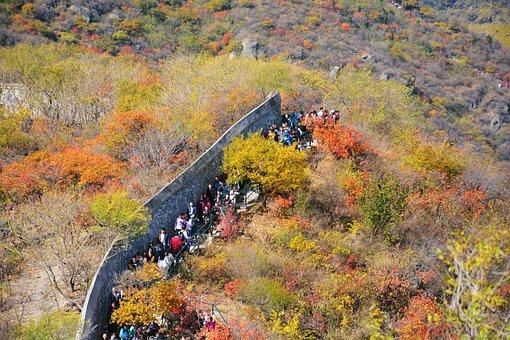Autumn, Beijing, Fragrant Hill, Park, Hill, Overlooking