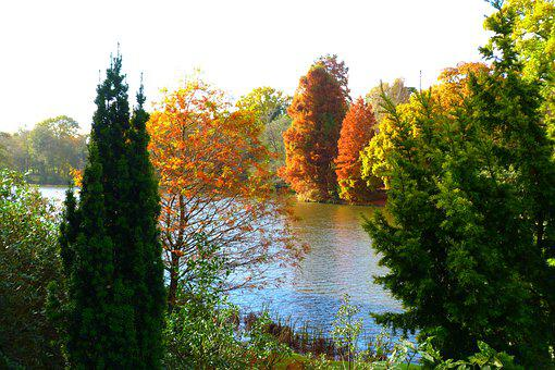 Autumn, England, Landscape, Color, Sheffield Park