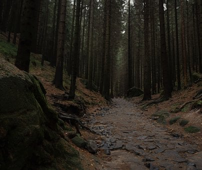 Bohemian Switzerland National Park, Czech Republic