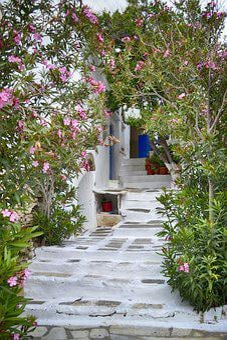 Greece, Island, Door, Tinos, Pyrgos, Dor, Flowers, Path