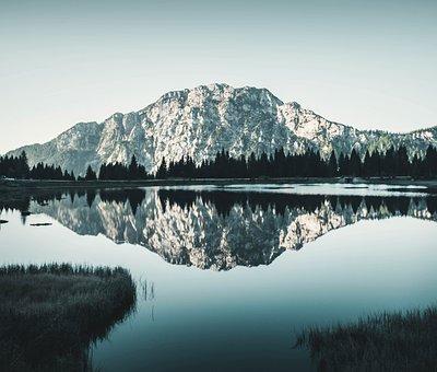 Nature, Lake, Mirror, Reflection, Trees, Pine Tree