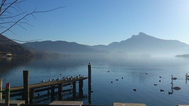 Fog, Water, Bank, Mountains, Landscape, Mondsee