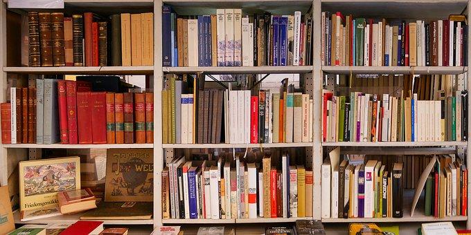 Training, Read, Learn, Education, Book, Shelf