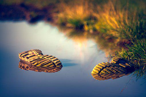 Shoe, Water, Mirroring, Grass, Nature, Fashion