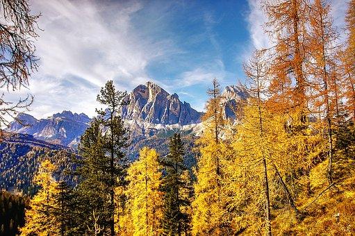 Indian Summer, Dolomites, Autumn, Belluno, Alm, Nature