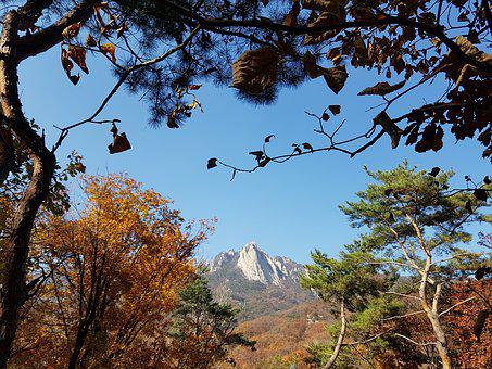 Dobong, Autumn Is Also The Backyard