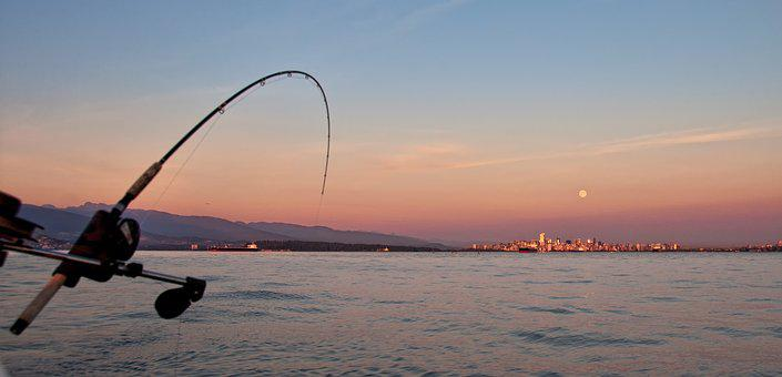 Angler, Beautiful, Boat, Charter, City, Downrigger