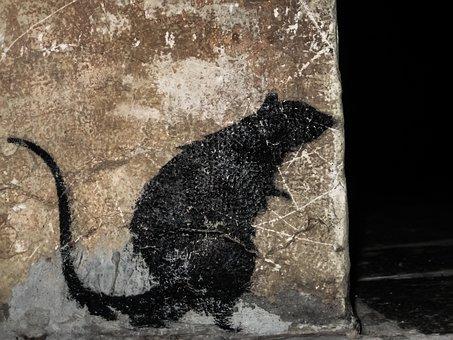 Italy, Venessia, The Rat, Romantic, Channel, Famous