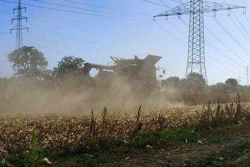 Corn, Harvest, Combine Harvester, Nature, Vegetables